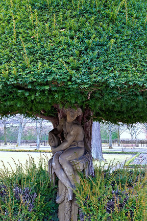 Statue's set into a tree at Würzburg Residenz Palace