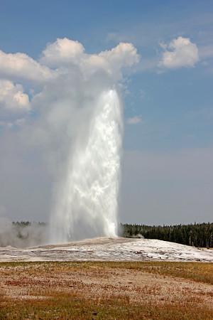 Yellowstone National Park / Old Faithful