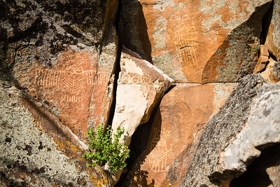Petroglyphs at Ring Lake Ranch