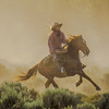 ...as a lone rider keeps the horses from straying too far.
