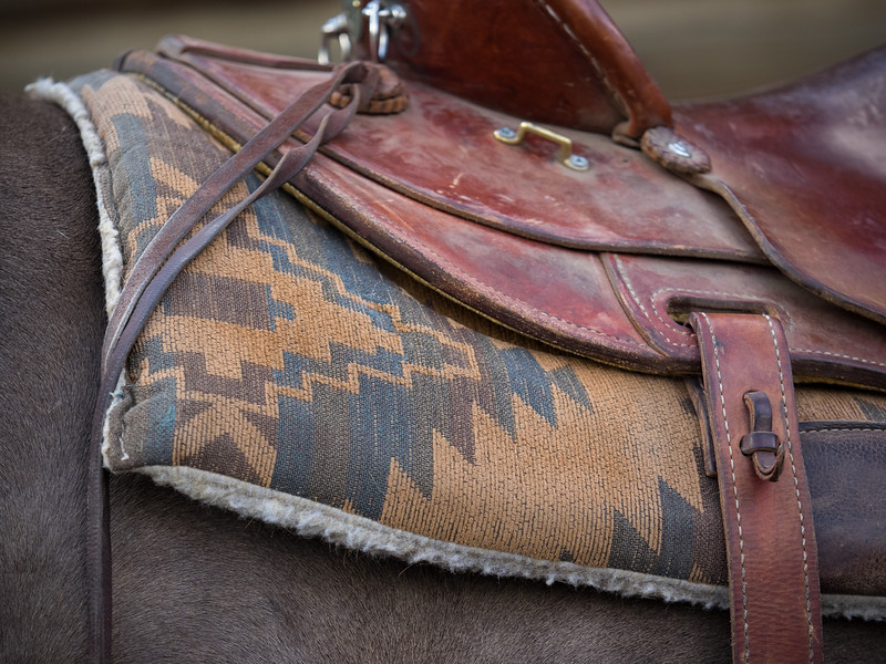 The saddle blanket is a form of art.
