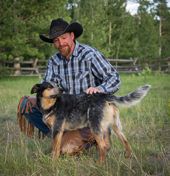 Dogs are a big part of ranching life.