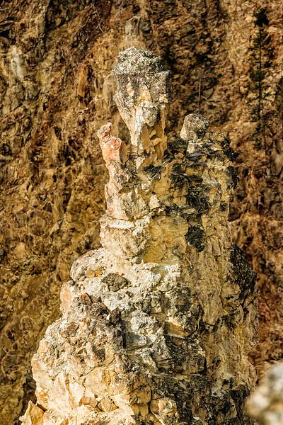 _MG_7881 canyon yellowstoine falls