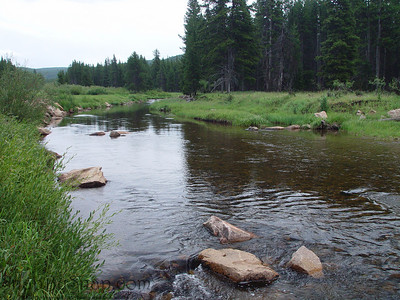 A river running through Bighorn National Forest in Wyoming.