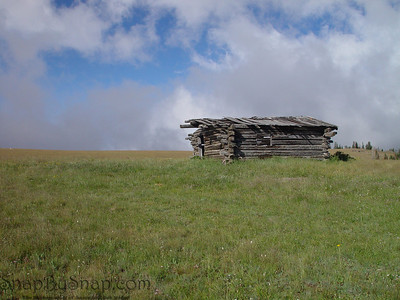 The ruins of an old settlers home in Bighorn National Forest in Wyoming.