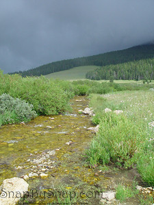 A streaming with storm clouds running through Bighorn National Forest in Wyoming.