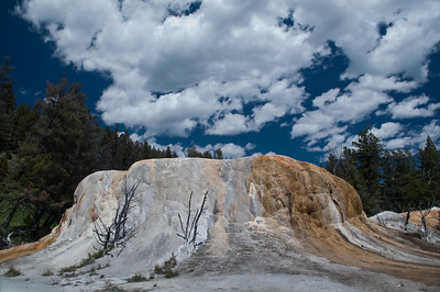 Yellowstone Vacation - Mammoth Springs Area
