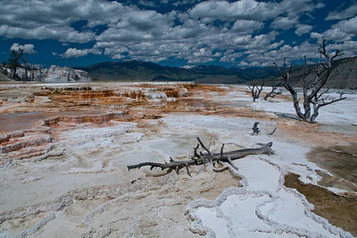 Yellowstone Vacation - Mammoth Springs area - Terraces