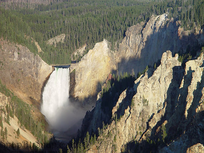 Early morning image of the Lower Falls in the Grand Canyon of the Yellowstone in Yellowstone National Park.