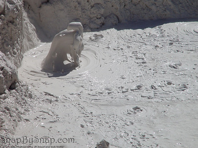 A mud volcano boils in Yellowstone National Park.