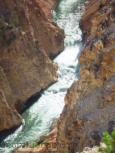Looking at the Yellowstone River in the Grand Canyon of the Yellowstone in Yellowstone National Park.
