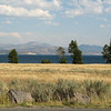 Views of Lake Yellowstone with Absaroka Mountains in Background   - Yellowstone National Park  9-5-05