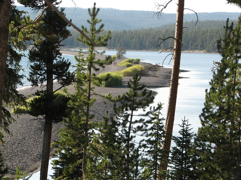 Along Highway by the Lake   - Yellowstone National Park  9-5-05