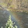 Rainbow at Upper Falls Area  - Yellowstone National Park  9-5-05