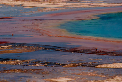 Grand Prismatic Spring Yellowstone NP