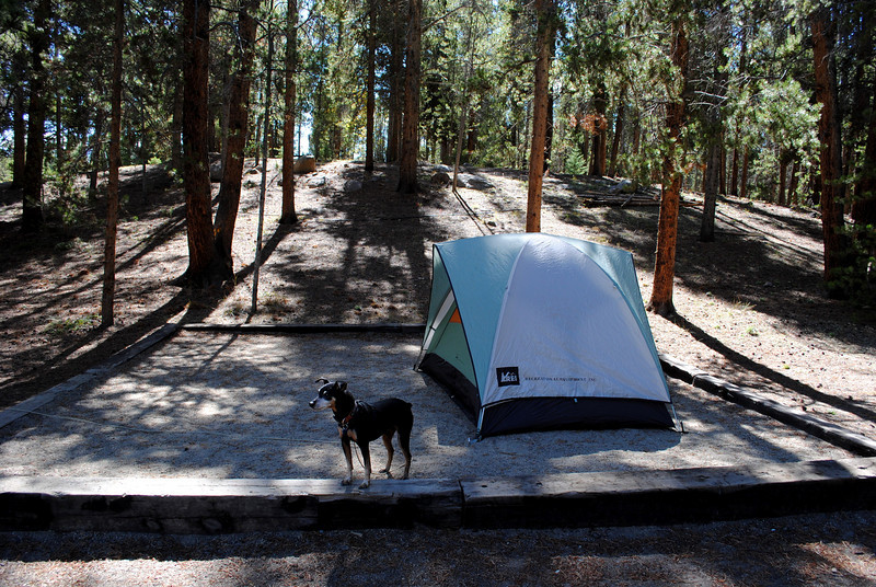Our campsite at Sugarloafin' Campground in Leadville, CO