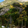Aspens turning near Copper Mountain