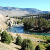 Lamar River Valley (YNP)