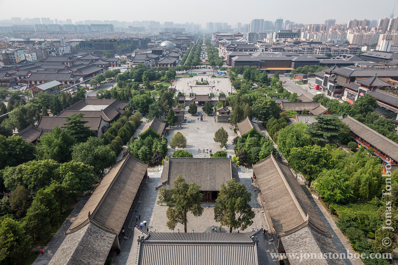 View From Giant Wild Goose Pagoda