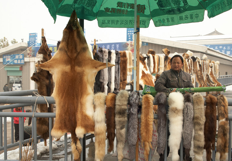 Furs for sale not far from Emperor Qin's Terracotta Army Museum.