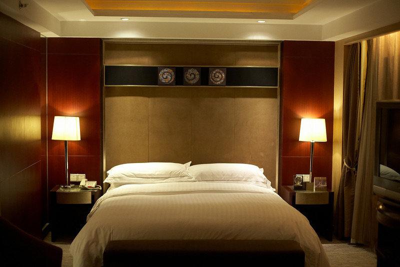 We set up shop at the Sofitel. Normally, we just look for a hotel that's clean because we're out all day. However, we found a great deal that gave us a ridiculously cheap price, so why not go luxury at the heart of the city?