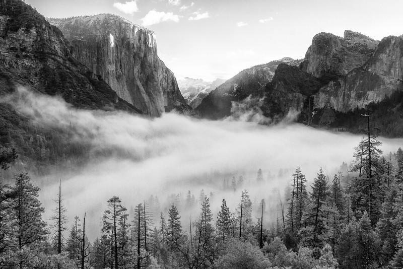 Foggy Morning in Yosemite Valley