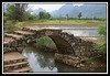 Bridge over irrigation ditch with rice paddies in background...