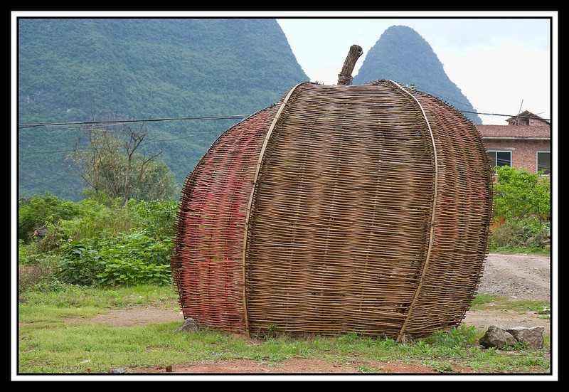 Wicker storage shed...
