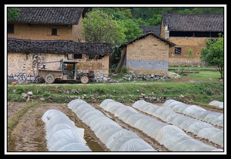 "Farm house with Mao era truck, commonly called a ""Tuk-Tuk""...."
