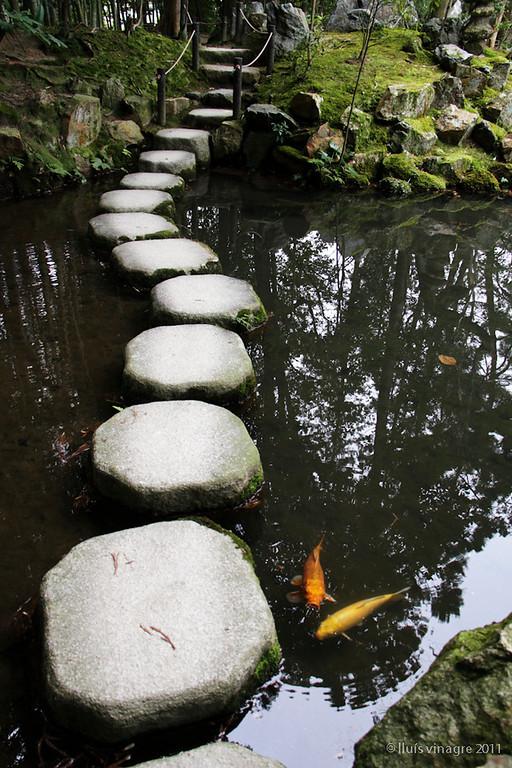 jardín del templo de tenjuan, nanzenji, kyoto / 天授庵、南禅寺、京都