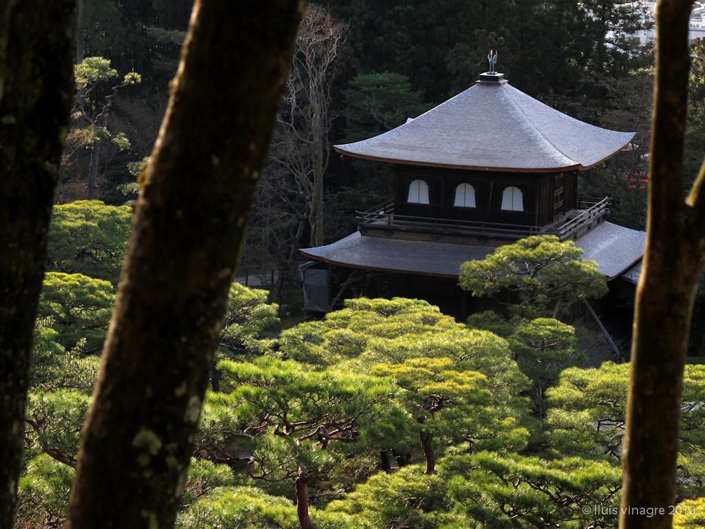ginkakuji (templo de plata), kyoto / 銀閣寺、京都