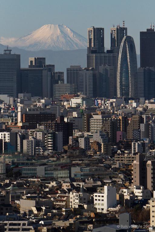 mount fuji y shinjuku, tokyo / 富士山と新宿, 東京