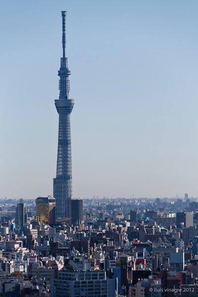 tokyo sky tree (el árbol del cielo) / 東京スカイツリ