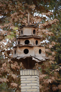 Bird house in a park in Yazd where we had tea.