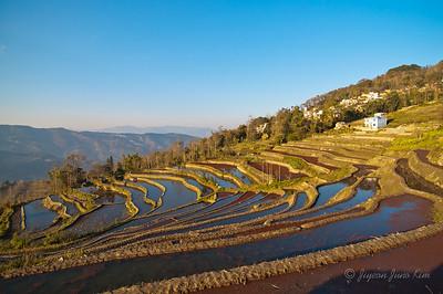 Rice Terrace - Xinjie, Yunnan Province, China