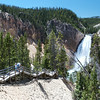 Hiking down to Lower Yellowstone falls.