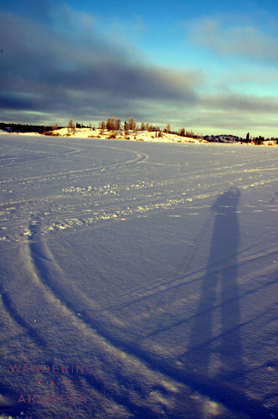 Self-portrait while cross-country skiing