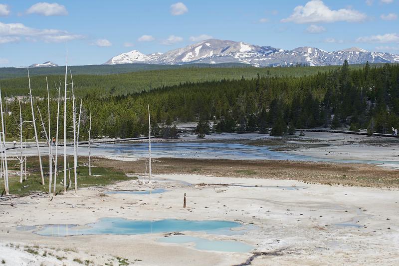 Porcelain Basin, Norris Geyer basin