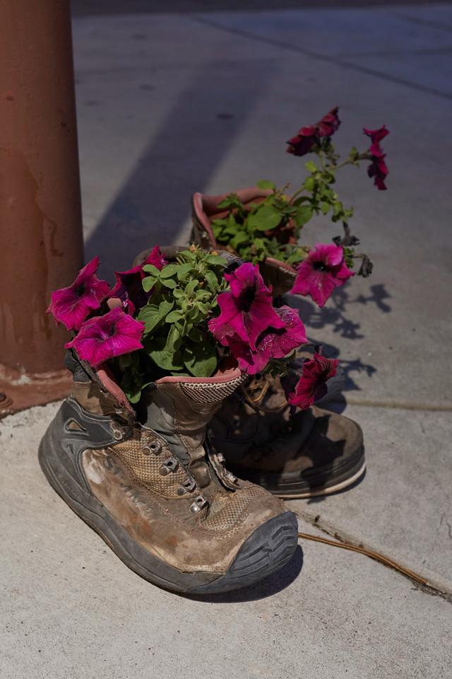 Flower Pots, West Yellowstone