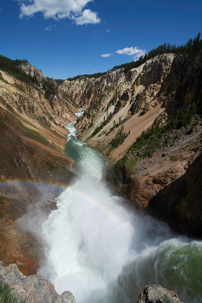 Grand Canyon of Yellowstone, above Lower Falls