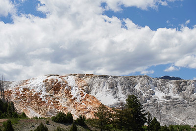 Canary Spring, Mammoth Hot Springs