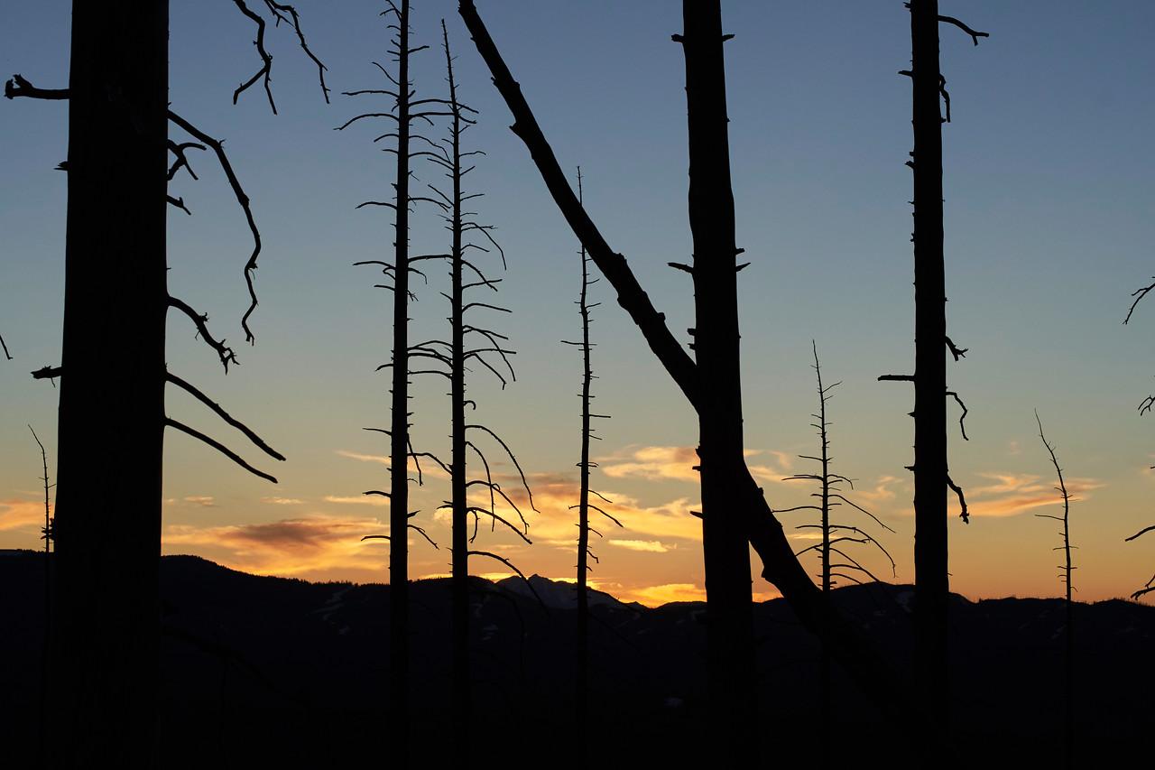 Sunset near Mt. Washburn