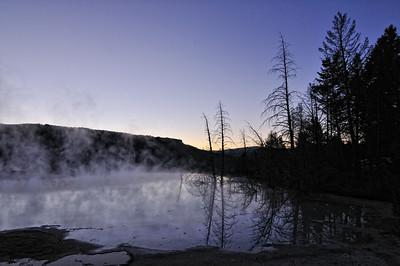 Mammoth Hot Springs at Dawn.