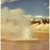 Little Whirligig Geyser <br /> Norris Geyser Basin
