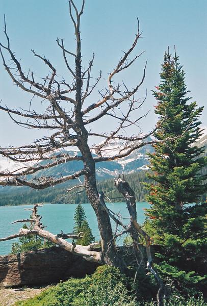 Sun Point, St. Mary Lake