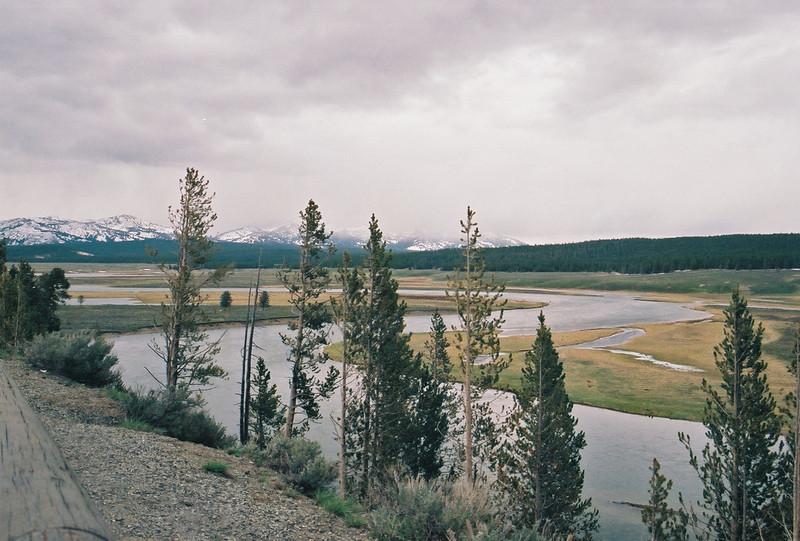 Hayden Valley and Yellowstone River