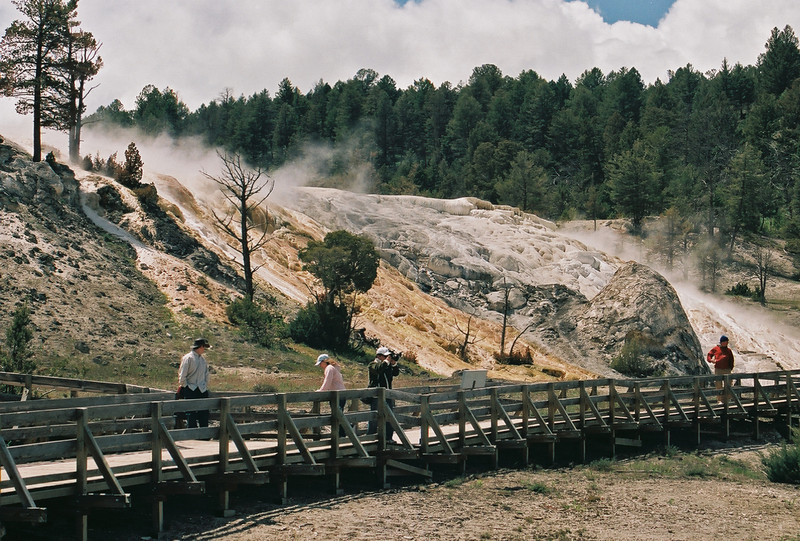 Mammoth Hot Springs, upper terraces