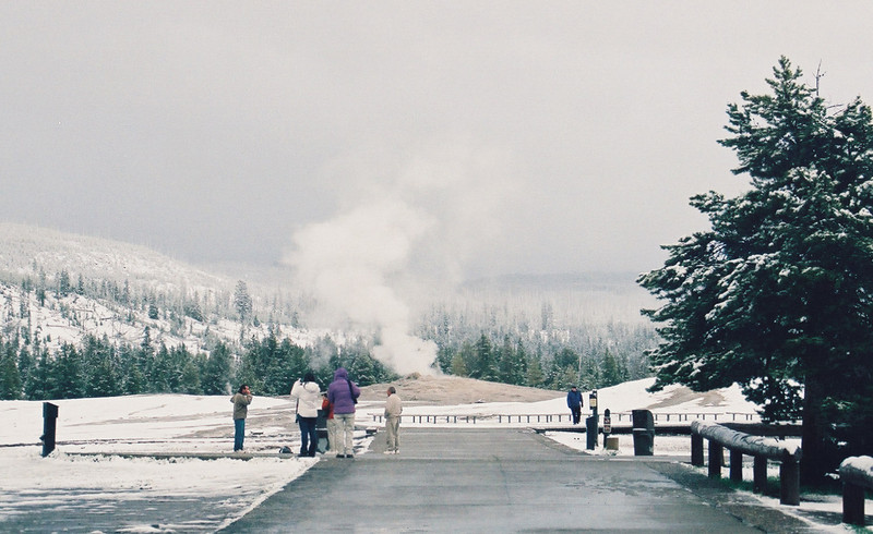 Old Faithful geyser, in the snow