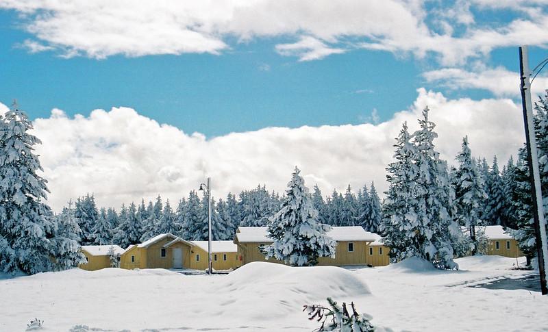 Tourist cabins, Yellowstone Lake Hotel