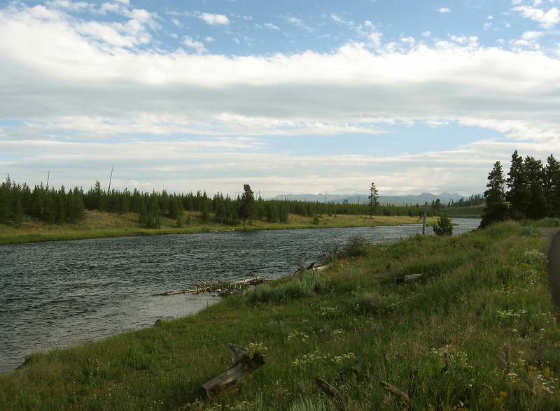 We left West Yellowstone early Tuesday morning, headed for Old Faithful. Here's the Madison River.